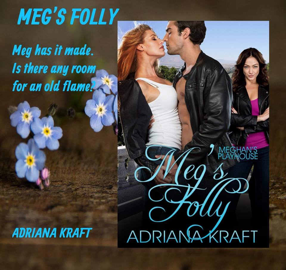 Megs Folly Banner